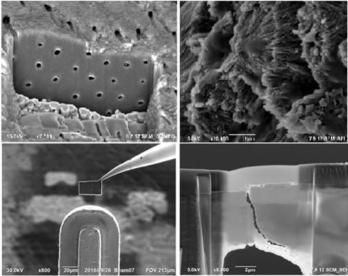 SUNUM Electron Microscopy and Spectroscopy