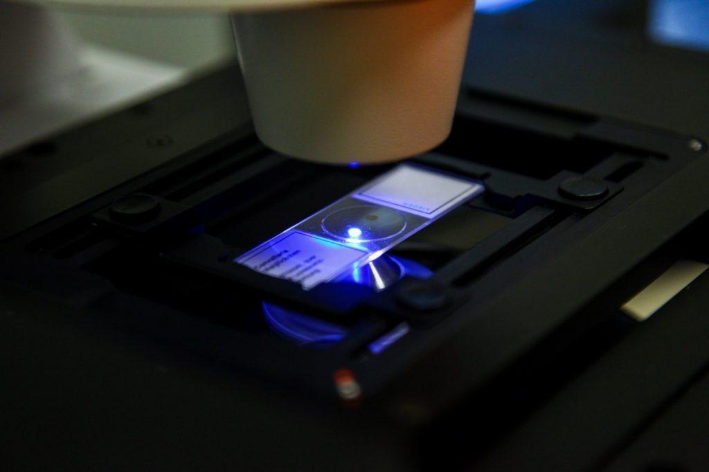 SUNUM | Advanced Microscopy