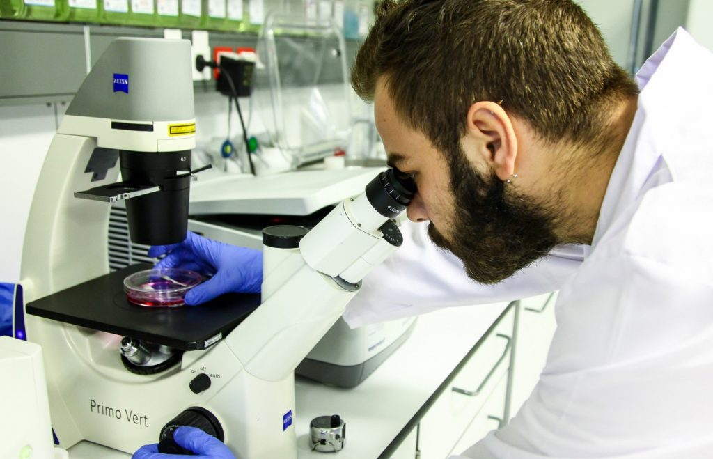 SUNUM   Cell Culture