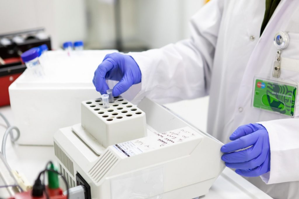SUNUM   Molecular Biology / Microbiology