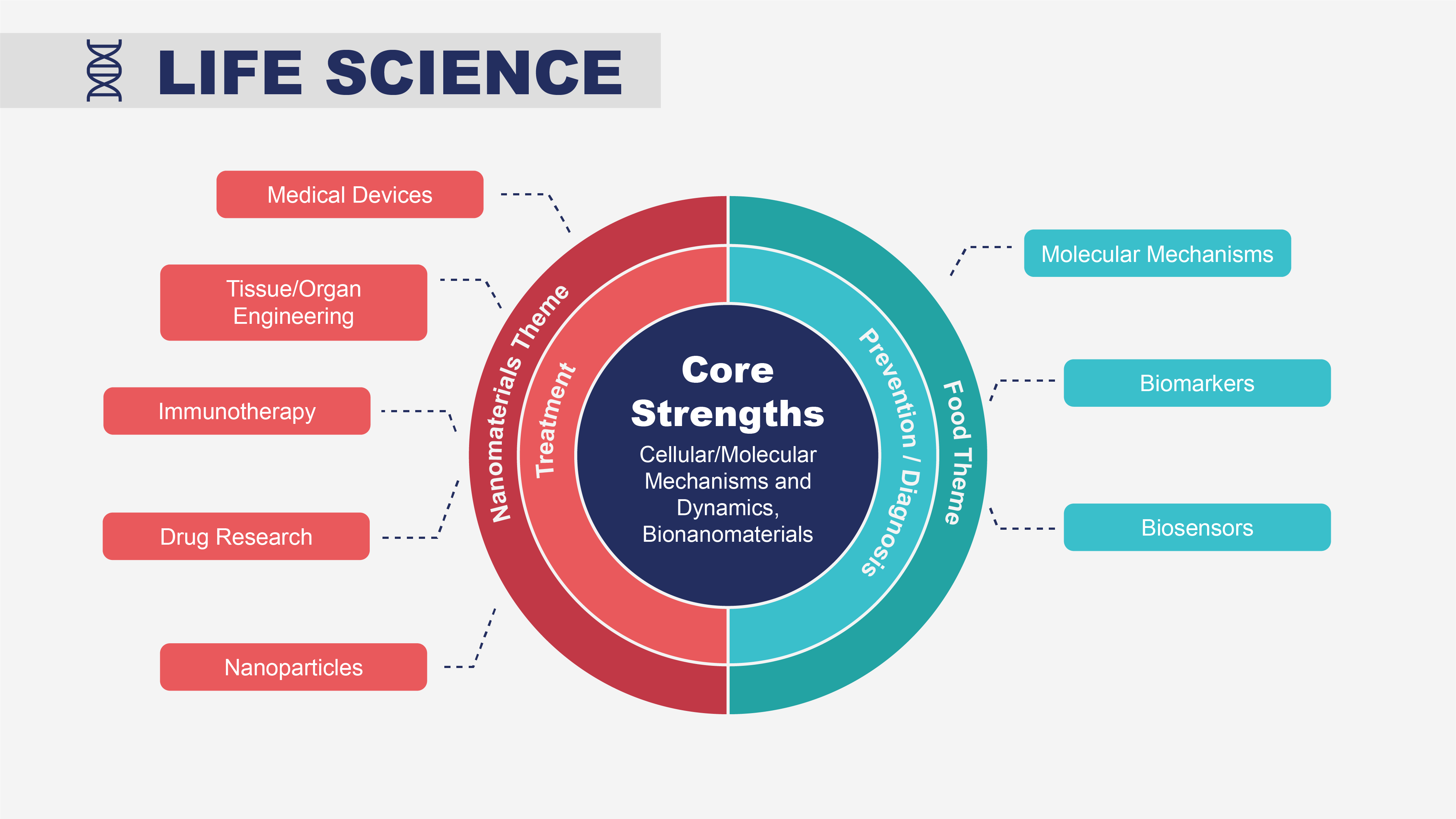 Sunum Yaşam Bilimleri Projeleri
