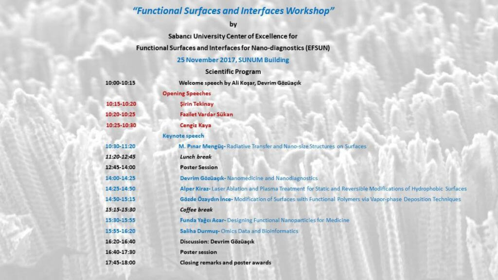 Functional Surfaces and Interfaces for Nano Diagnostics Workshop